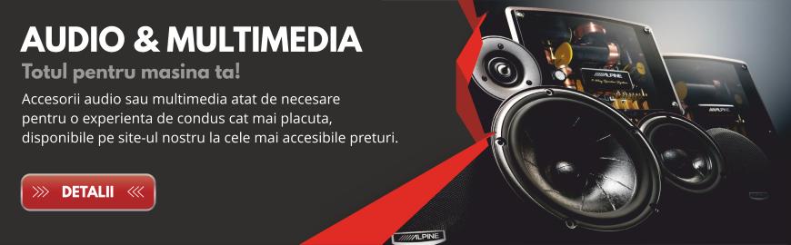 Audio & Multimedia